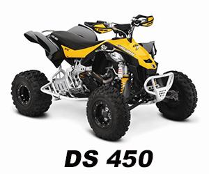DS 450-2014