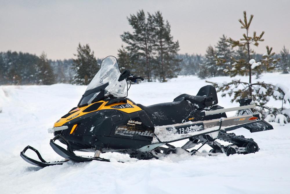 Утилитарный снегоход Скидо